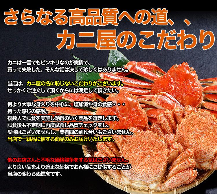 c-sinmono_re.jpg