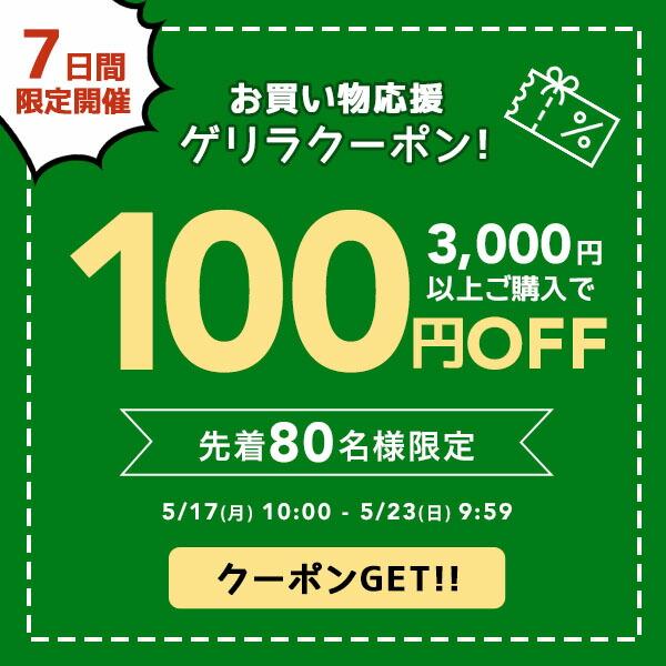 お買い物応援100円OFFクーポン