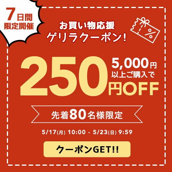 お買い物応援250円OFFクーポン