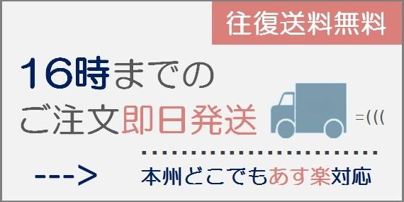 16時ご注文まで東京即日発送