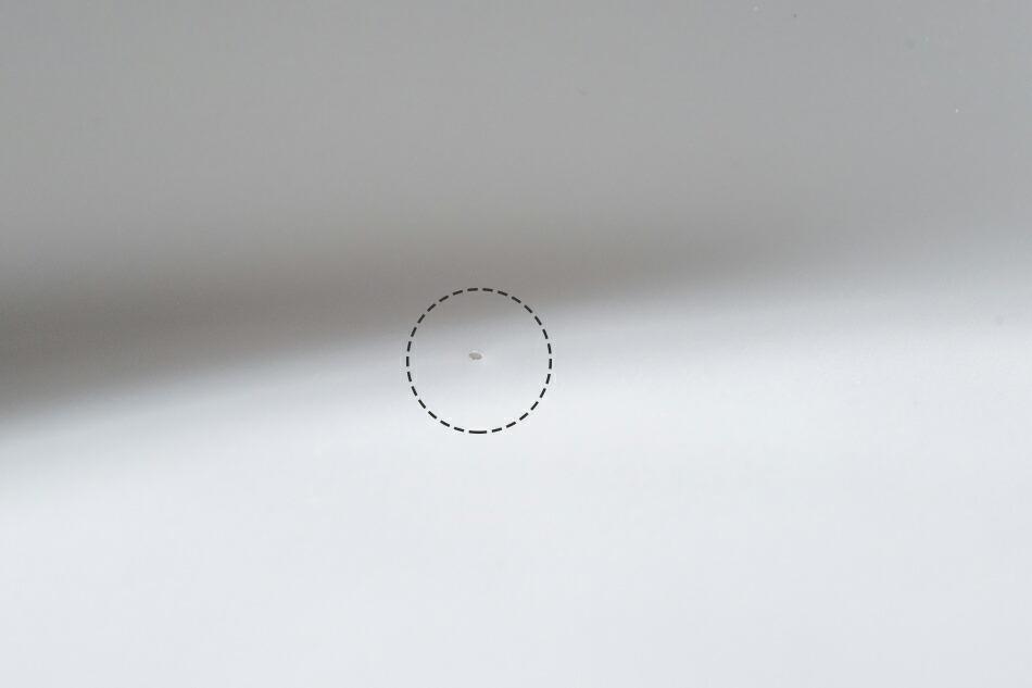 ユニバーサル多用深皿(デザインモリコネクション)