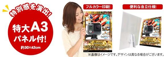 【目録引換券・特大A3パネル付き】GoProビデオカメラHERO+LCD