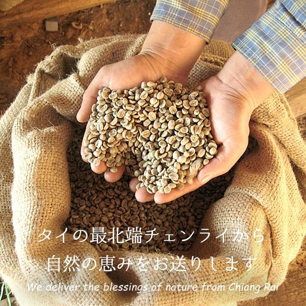 無農薬栽培コーヒー豆 Atlantis Coffee from chiangrai 500g×2