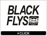 BLACK FLYS(ブラックフライ)