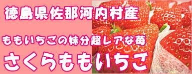 さくらもも苺