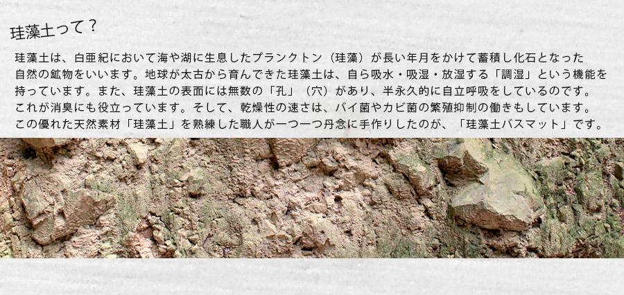 珪藻土バスマット 北欧