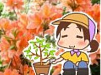 【富士園芸】花屋の嫁ブログ