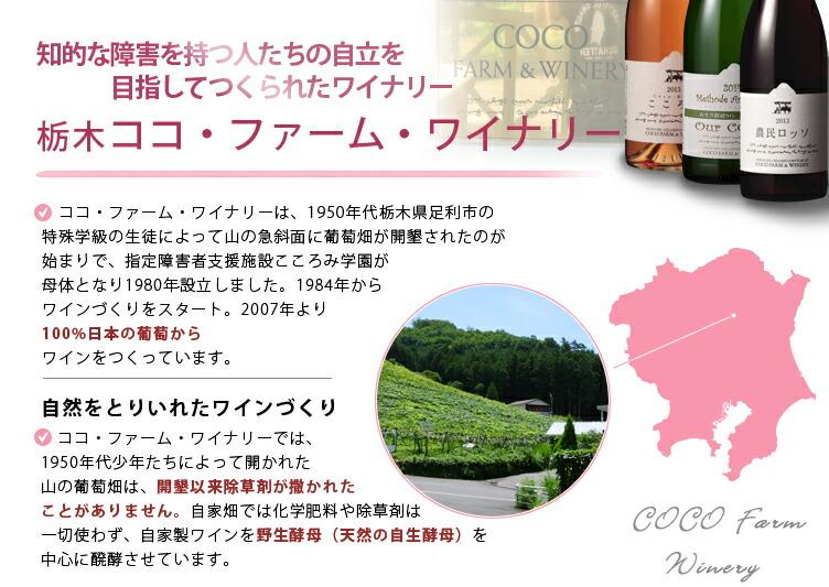ココ・ファーム・ワイナリーは、1950年代栃木県足利市の特殊学級の生徒によって山の急斜面に葡萄畑が開墾されたのが始まりで2007年より100%日本の葡萄からワインをつくっています。