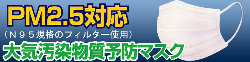 ERA Japan ERA MASK(マスク)5枚入(PM2.5対応) 【メール便で3枚までOK!】