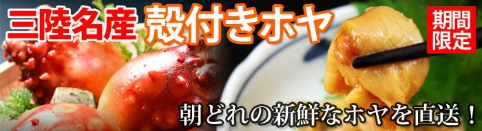 満天☆青空レストランで紹介されました!石渡商店の気仙沼完熟牡蠣のオイスターソース