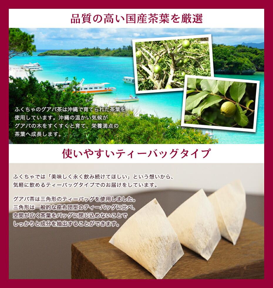 ふくちゃでは沖縄で育った茶葉を毎日使いやすいティーバッグタイプでお届けします。