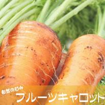 九州熊本産フルーツキャロット