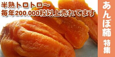 あんぽ柿特集