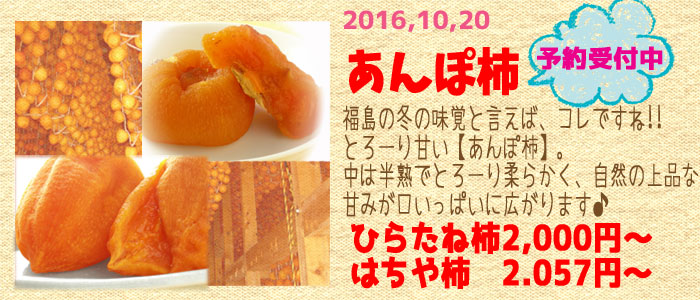 あんぽ柿 特集