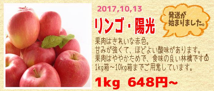 甘味と酸味のバランスが絶妙なりんご『陽光』