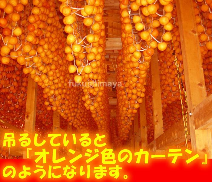 あんぽ柿を干している様子はオレンジ色のカーテンのようだと言われています。