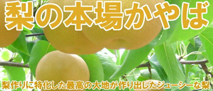 梨の本場『萱場の梨』