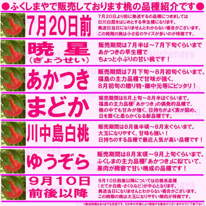ふくしまやで販売しております桃の品種紹介です  暁星⇒販売期間は7月下旬から7月末ぐらい。あかつきの早生種でちょっと小ぶりの甘い桃です  あかつき⇒販売期間は8月上旬から8月15日ぐらい。福島の主力品種で甘味が強くお盆前の贈り物・御中元等に最適です  まどか⇒販売期間8月中旬頃から8月20日ぐらい。福島の主力品種、あかつきの偶発的品種で桃の中でも甘みが強く日持ちがよく実が固め。日を置くとやわらかくなる新品種♪ 川中島白桃⇒8月20日前後から9月上旬ぐらい。桃の粒が大きく甘みも強い!日持ちのする品種で最近人気が高い品種です! ゆうぞら⇒9月上旬頃から9月10日前後まで。ふくしまの主力品種『あかつき』に似ていて果肉が緻密で甘〜い晩成の品種です  *暁星が出荷できるまでの7月下旬位まで及びゆうぞら以降の桃の品種については出荷日によって異なりますので予めご理解の程お願いいたします。