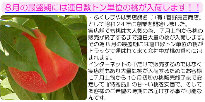 8月の最盛期には連日数トン単位の桃が入荷します  ふくしまやは実店舗名『有限会社 菅野房吉商店』として昭和24年に創業を開始しました。実店舗でも桃は大人気の為、7月上旬から桃の販売が終了するまで連日大量の桃が入荷します。その為8月の最盛期には連日数トン単位の桃がトラックで運ばれて来て会社中が桃の香りに包まれます。 インターネットの中で販売するのではなく実店舗もあり大量に桃が入荷するためにお客様に7月上旬から10月の初旬の桃販売終了まで安定して『特秀品』の甘〜い桃を安価でそしてお客様のご要望の時期にお届けする事が可能なんです。