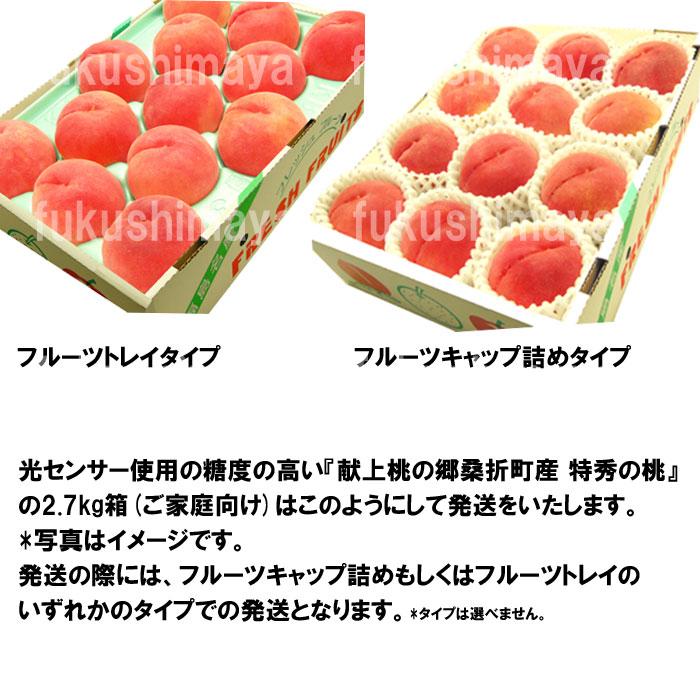 光センサー使用の糖度の高い『献上桃の郷桑折町産 特秀の桃』 の2.7kg箱(ご家庭向け)はこのようにして発送をいたします。 *写真はイメージです。 発送の際には、フルーツキャップ詰めもしくはフルーツトレイの いずれかのタイプでの発送となります。*タイプは選べません。
