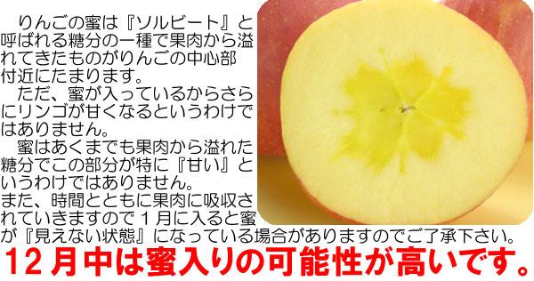 12月が蜜入りのりんごになる可能性が高いです。ただし、100%蜜入りを保証することは出来ませんのでご了承下さい。
