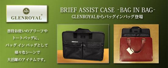 ASSIST CASE