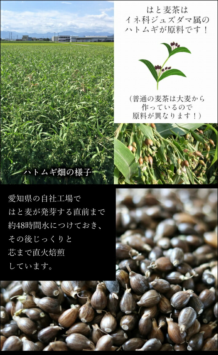 はと麦茶は、イネ科ジュズダマ属のハトムギが原料です。自社工場で芯まで直火焙煎