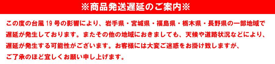 台風19号遅延