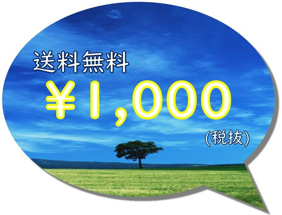 ¥1000