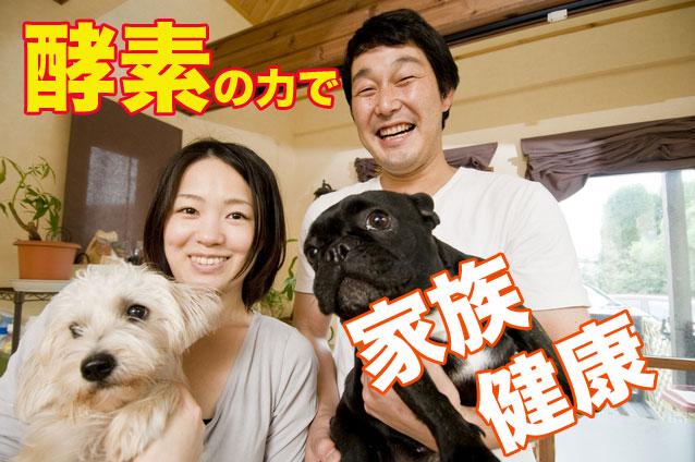 犬と家族で健康