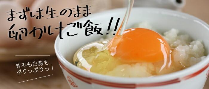 まずはそのまま卵かけご飯!