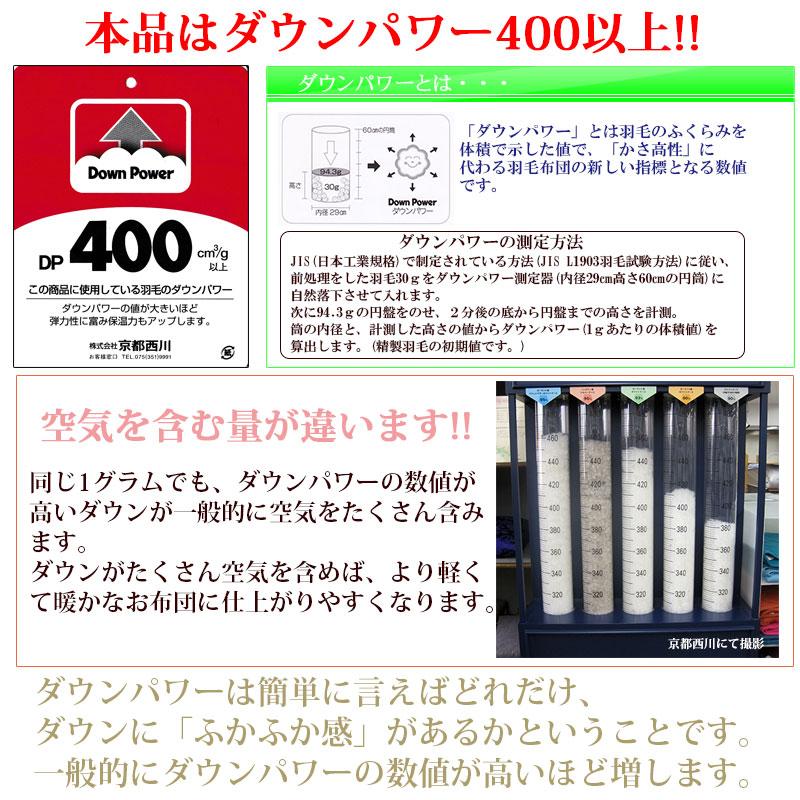 ダウンパワー400