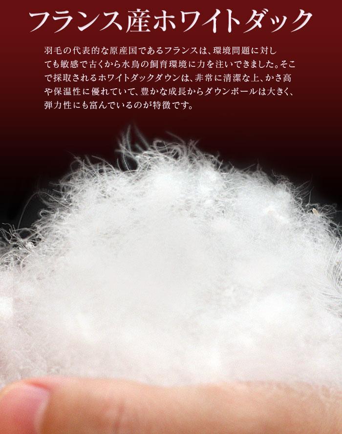 羽毛合掛け布団画像-03