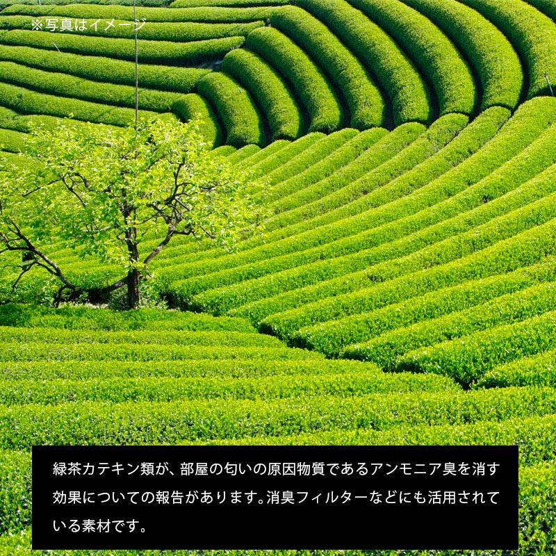 ※写真はイメージ 緑茶カテキン類が、部屋の匂いの原因物質であるアンモニア臭を消す効果についての報告があります。消臭フィルターなどにも活用されている素材です。