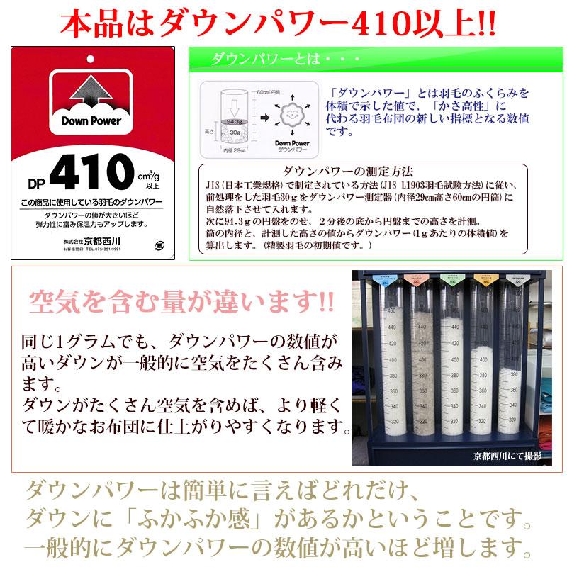 ダウンパワー410