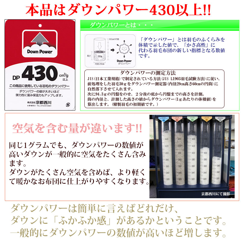 ダウンパワー430