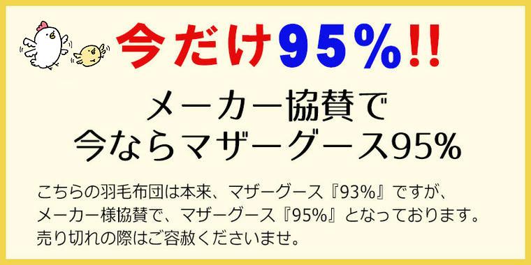 今だけ95%
