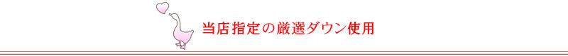当店指定厳選ダウン-01