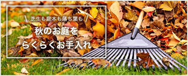 秋の庭掃除