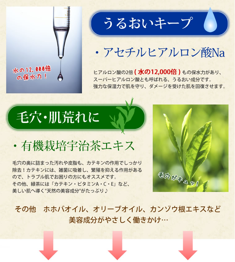 アセチルヒアルロン酸、有機栽培宇治茶エキス配合