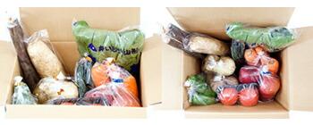 おまかせ 野菜&果物セット お届け一例