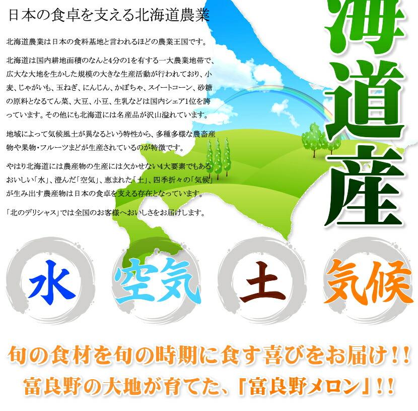 北海道 富良野 富良野メロン