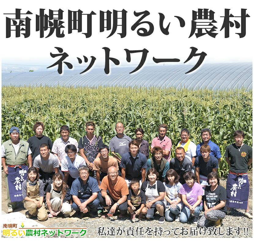 北海道産 南幌町明るい農村ネットワーク とうもろこし ピュアホワイト