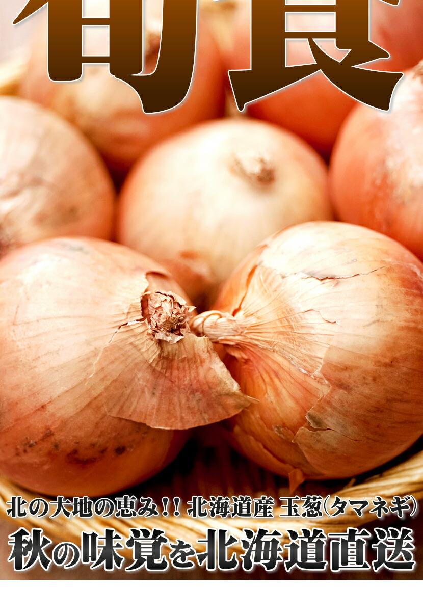 北海道産 玉葱