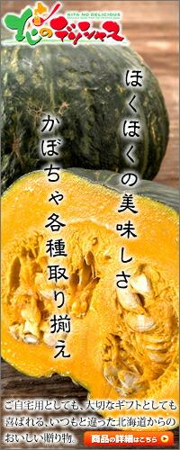 北のデリシャス 北海道産 南瓜 かぼちゃ