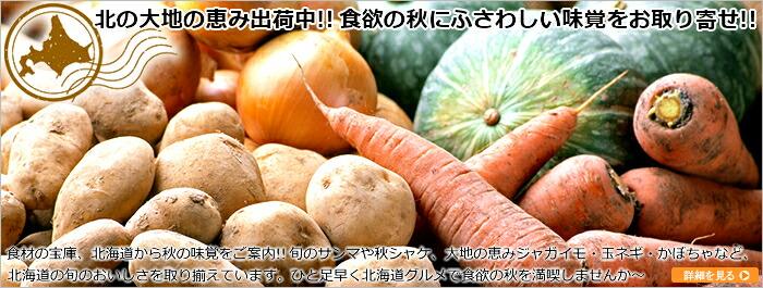 北海道産 秋野菜
