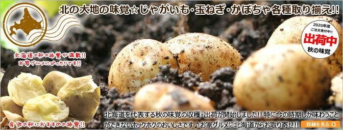 北海道産 じゃがいも 玉ねぎ かぼちゃ