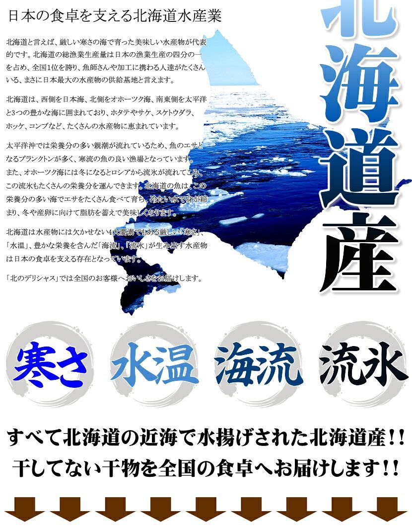 北海道産 干物セット ピチピチ造り ふじと屋