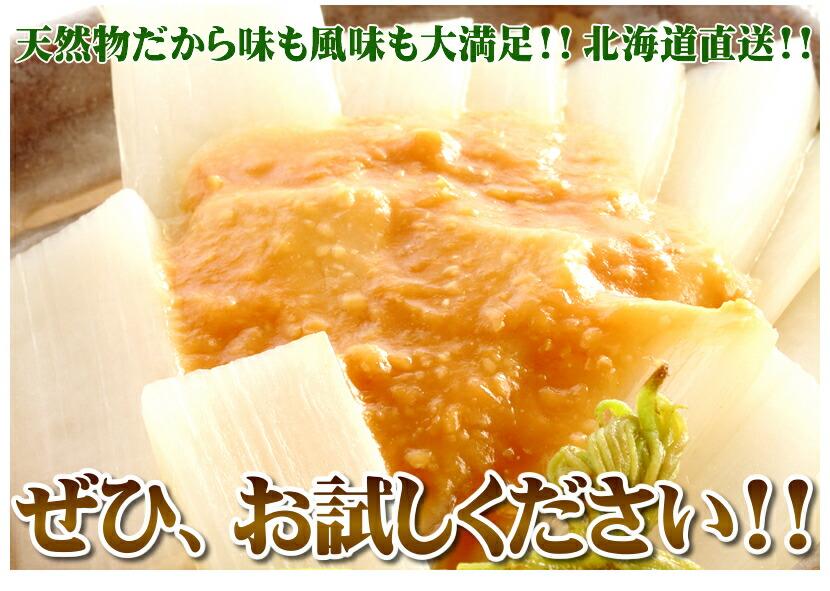 北海道産 天然 山ウド(山独活)