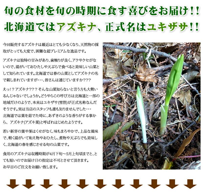北海道産 天然 アズキナ・ユキザサ